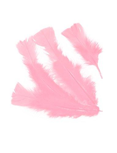 Der Spieglein Kostüm An Wand - Deiters Federn 100er-Pack rosa
