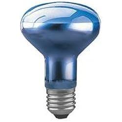Paulmann Reflektorlampe R80 Pflanzenwachstum 75W E27