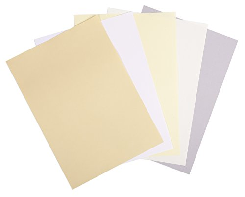 G.Lalo 41116L Papier Vergé de France (210g, DIN A4, 21 x 29,7 cm, 50 Blatt, elfenbein) (Business Card Stock Papier)
