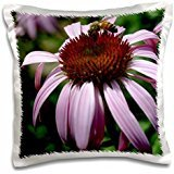 Patricia Sanders Summer Life- Bee on a Pink Echinacea Flower- Floral Photography - 16x16 inch Pillow Case