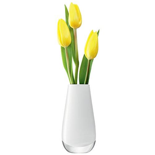 LSA–Vaso fiori. colore. 14 cm. Vetro. Bianco. 7 x 7 x 14 cm