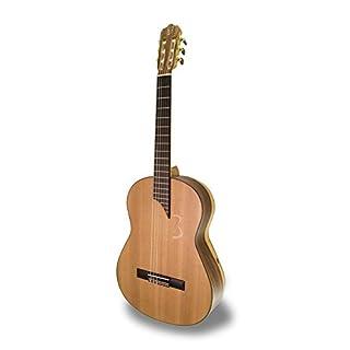 APC 8C MX Classical Guitar