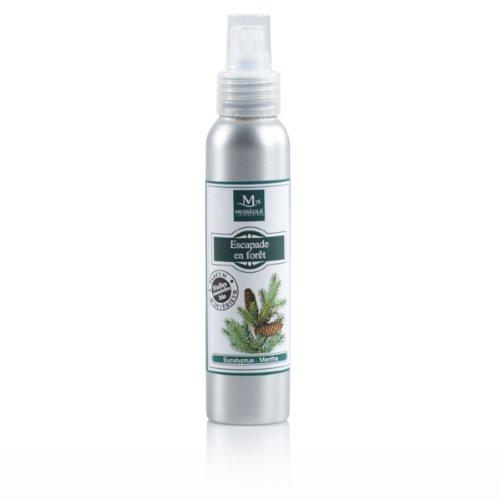 laboratoire-messegue-escapade-en-foret-parfum-dinterieur-100-ml