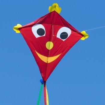 Großer Kinderdrachen - SUPER-DRACHEN Happy Eddy XL – Einleiner Flugdrachen für Kinder ab 6 Jahren - 102x108cm - inklusiv 80m Drachenschnur und Streifenschwänze