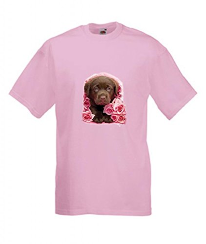 Erwachsene Schokolade Tee T-shirt (Simply Tees Einfach Tees Schokolade Labrador Puppy Georgie Erwachsene T-Shirt Gr. XX-Large, Rose)