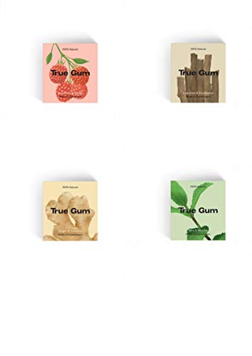 True Gum Probierset 4 Sorten - natürlicher Kaugummi - plastik frei! (1x pro Sorte: Ingwer & Kurkuma, Pfefferminze & Matcha, Süssholz & Eukalyptus, Himbeere & Vanille), 80 g