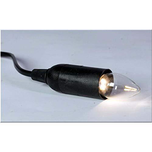 Rossi Rosa Halter mit LED-Lampe, Warmlicht, E14-220 Volt, Mehrfarbig, Einheitsgröße