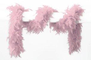 federboa rosa Wilbers Karneval 21000-11 - Federboa 180cm, rosa