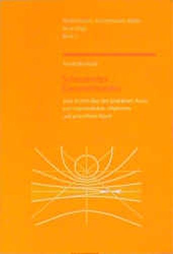 Schauendes Geometrisieren: Vom Würfel über den projektiven Raum zum hyperbolischen, elliptischen und polaraffinen Raum (Mathematisch-Astronomische Blätter)
