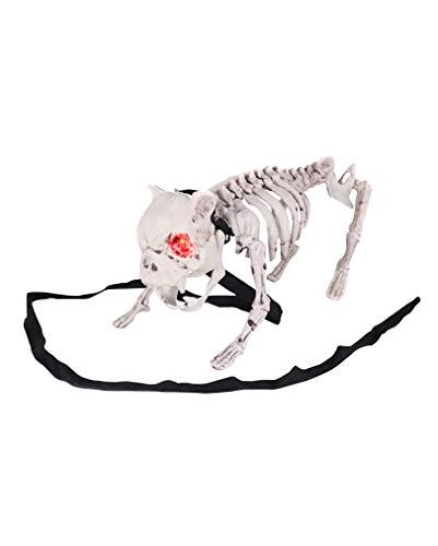 Skelett Hund mit LED Augen & -