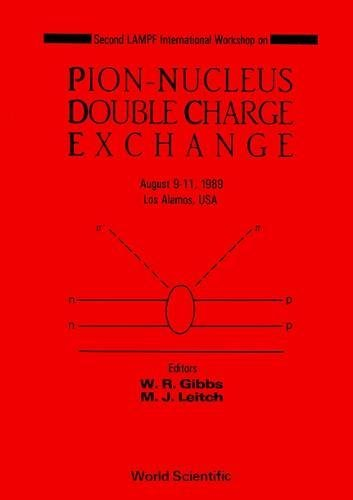 The Pion-nucleus Double Charge Exchange: Workshop Proceedings