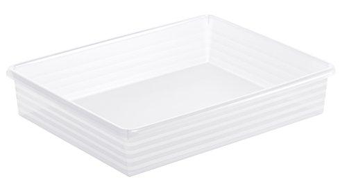 Rechteckige Schublade (Rotho 1719400096 Formatkörbchen Linus aus Kunststoff, A4, transparente Aufbewahrungsbox, 34,5 x 27 x 6 cm)