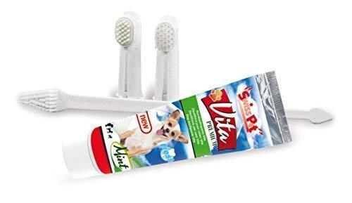 Frische Minze Gel (SwissPet 4in1-Zahnpflege Set für Hunde, 1x Zahnpasta, 3X Zahnbürste für Dentalpflege, verbesserung der Mundhygiene)