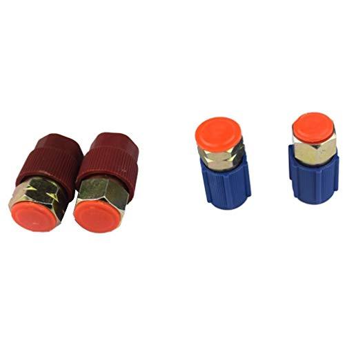 XuBaofu-SH, 4 Arten A/C 3/8 7/16 Port Adapter Nachrüsten R12 Port auf R134a Mit Kappen Ventile Klimaanlage Teilesatz