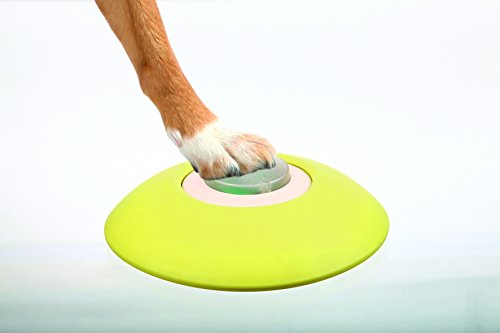 Trixie 32040 Dog Activity Memory Trainer, ø 20 × 24 cm - 11