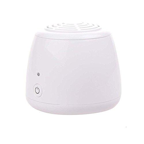 USB-Ionenluftreiniger, tragbar, Ionisator zur Entfernung von Zigarettenrauch und Bakterien, kleiner Luftreiniger für Haustierklosett, Schuhschrank, Kühlschrank (Plug-in Kleiner Luftreiniger)