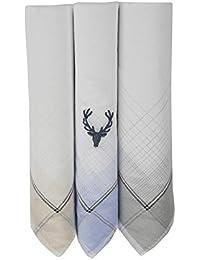 Allen Solly Men's Cotton Handkerchief (ASC3HWCBA00031E_Multi_One Size)