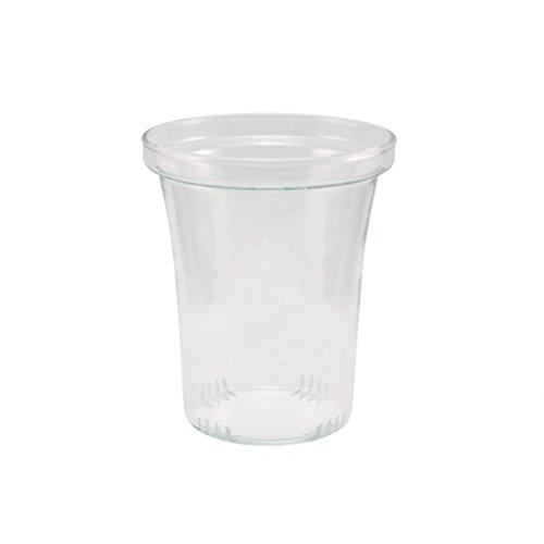 Trendglas Jena Glasfilter / Glassieb für Teekannen, groß