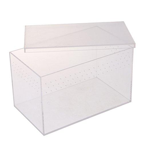 Baoblaze Acryl Fütterungsbox für Reptilien, Spinnen, Eidechsen, Klettertiere, Igel usw. - Typ 1-20.5x12.5x12.5cm