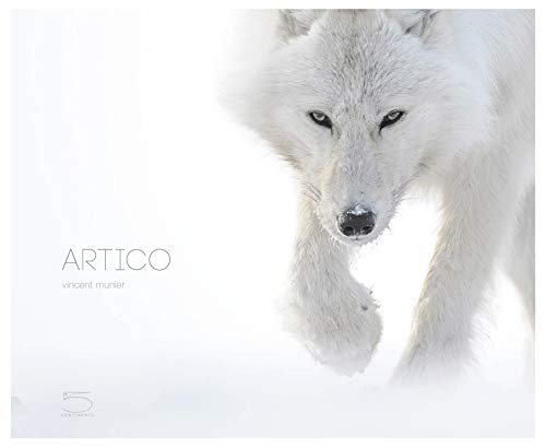 Artico. Ediz. illustrata por Vincent Munier