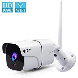 QZT Cámara IP WiFi Exterior, Cámara de Vigilancia Inalámbrica HD 1080P con Visión Nocturna, IR LED Motion Detection, Impermeable IP66 Cámara de Seguridad Exterior para Home Garden (WiFi + Ethernet)