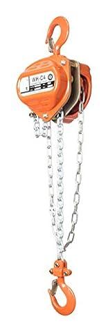 William Hackett C4 Hand Chain Hoist, 1.0 Tons, 6 m Height of Lift