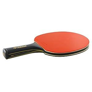 Donic-Schildkröt Tischtennisschläger CarboTec 7000, 100% Carbon, konkav & anatomisch, 2,3 mm Schwamm, ITTF Belag, im Blister