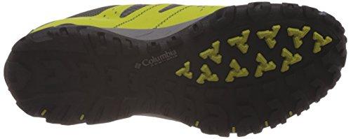 Columbia Peakfreak Xcrsn Xcel Outdry, Randonnée Basses Homme Vert (Chartreuse, Light Grey 380)
