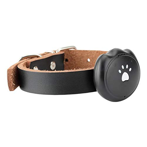 XDYFF Pet GPS Tracker con Collar, Mini Impermeable GPS Tracking para Perros...