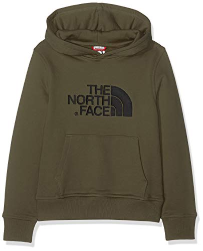 5ce7a41f6f THE NORTH FACE Kid's Drew Peak Hoodie, New Taupe Green, Large