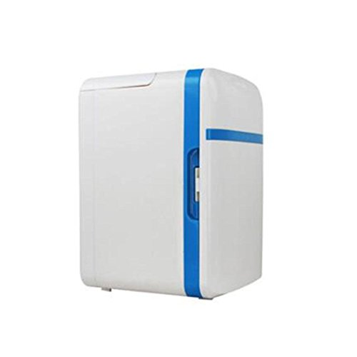 Kühlraum-tragbarer tragbarer Heizkörper-Kühlfunktions-beweglicher Minikühlraum-10L Doppelzweck-Auto-Kühlraum-mini beweglicher 12V Kühlschrank-Spielraum draußen