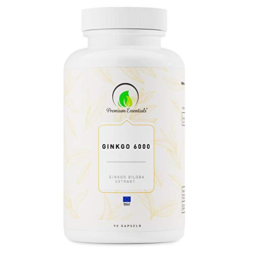 Ginkgo 6000, 90 Kapseln (vegan) Ginkgo Biloba Extrakt | Kann unterstützend wirken für Gedächtnis und Konzentration -