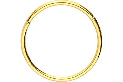 PIERCINGLINE Titan Segmentring Clicker   Piercing für ✔ Septum ✔ Tragus ✔ Helix u.v.m