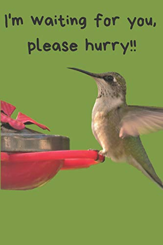 Hummingbird Blank Lined Journal: A notebook, daily dairy, gift idea for Hummingbird lovers!!  Keep track of your sightings! -