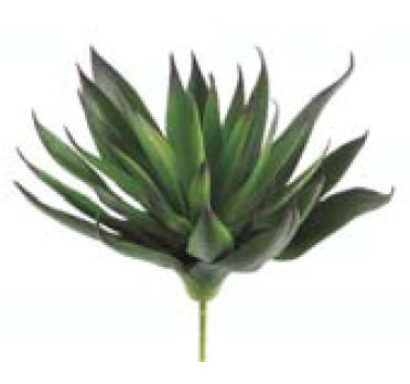 ca0230-gr-pu-78-in-agave-plant-with-33-leaves-green-purple-case-of-12