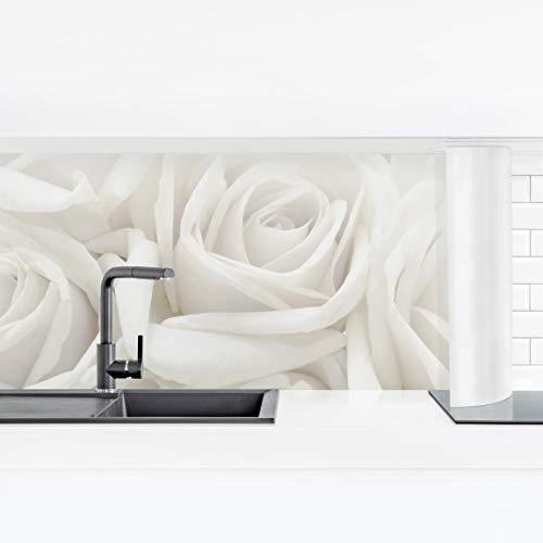 Bilderwelten Küchenrückwand Panorama Folie selbstklebend - Weiße Rosen Premium 40 x 140 cm