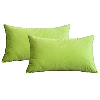 Lutanky Pack of 2 Elegant Velvet Throw Pillow Cases Soft Cushion Cover Solid Rectangle Decorative Pillow Covers for Sofa Bedroom Car (50 x 30 cm (apple green, 2 pieces)