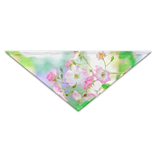 Gxdchfj Beautiful Peach Blossoms in Summer Triangle Pet Scarf Dog Bandana Pet Collars Dog Cat - Birthday