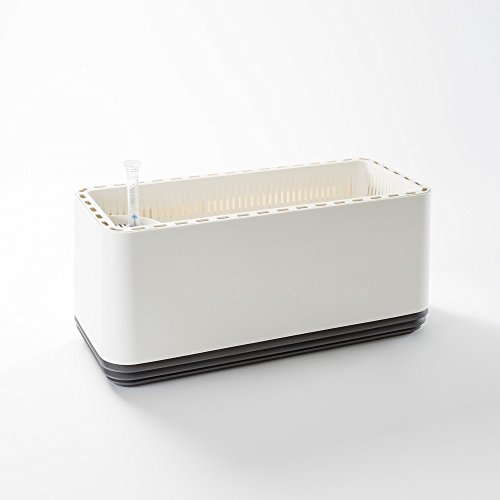 AIRY box - Innovativer Pflanzentopf als hochwirksamer Luftreiniger - Natürliche Luftreinigung mit Zimmerpflanzen ohne Strom u. Chemie (Stone Grey)