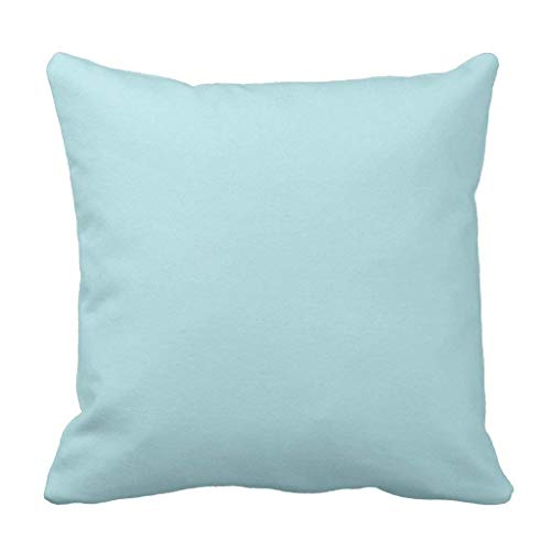 HLKPE Powder Blue Solid Color Throw Pillow Case Cushion Cover,Decorative Square Accent Pillow Case,Size:20x20inch/50x50cm -