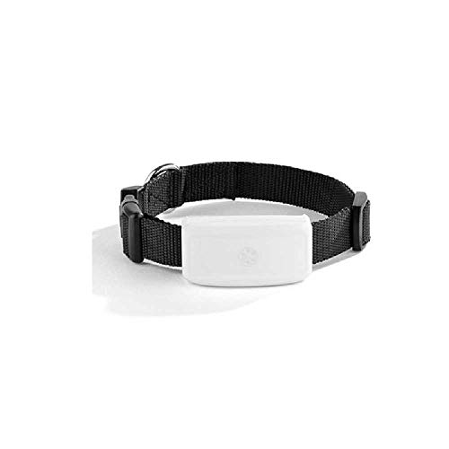 CFSN Hunde, Katzen, Hunde, GPS-Ortungsgeräte. 8.0 cm * 8.0 cm * 8.0 cm/Schwarz