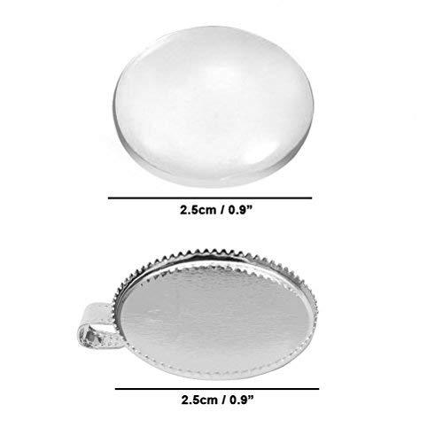 Zoom IMG-1 kurtzy 20 pezzi cupola in