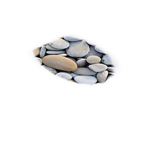 VORCOOL 3D Pegatina de Inodoro Calcomanías de Moda de Baño de PVC Etiqueta de La Pared para Inodoro Refrigerador (909)