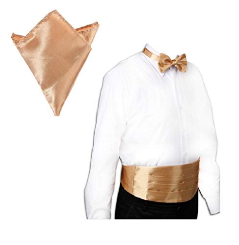 CellDeal New Italian Satin Cummerbund and Bow Tie and Hanky Set + Tiramisu
