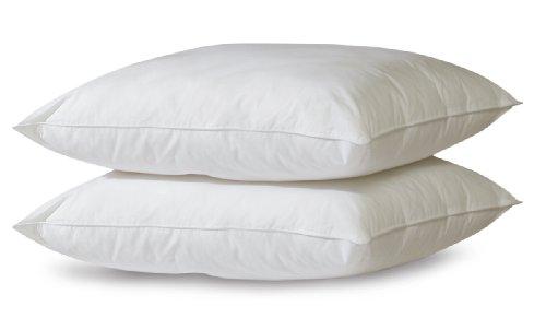 biopedic-2-pack-letto-cuscini-con-built-in-ultra-fresh-antiodore-jumbo-bianco