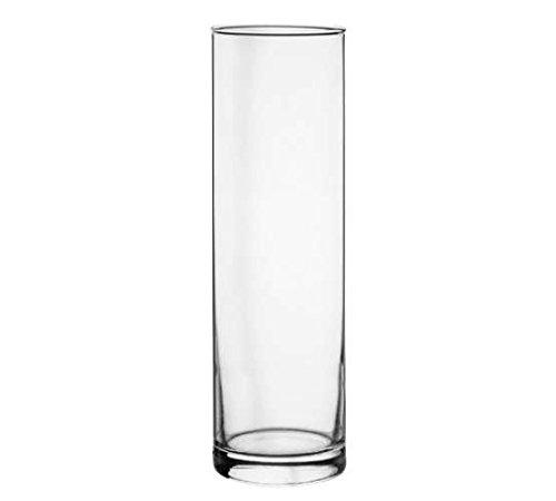 Pasabahce 43896 Botanica - Jarrón (cristal, cilíndrico)