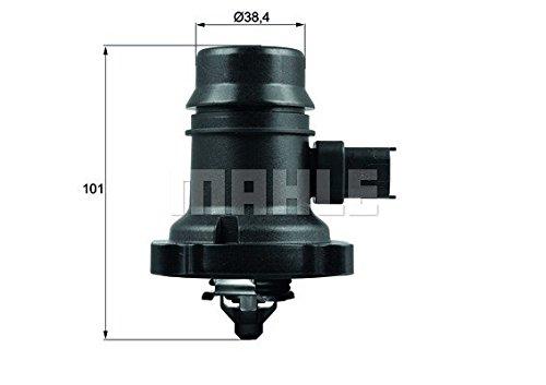 Thermostat d'eau TM 37 103