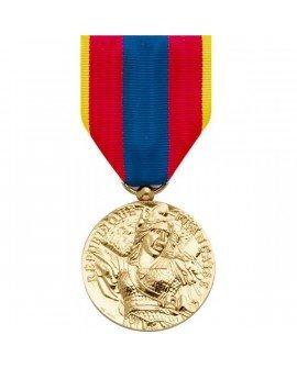 Le Comptoir Des Médailles - Médaille Défense Nationale Or - DEMO0ODENAT