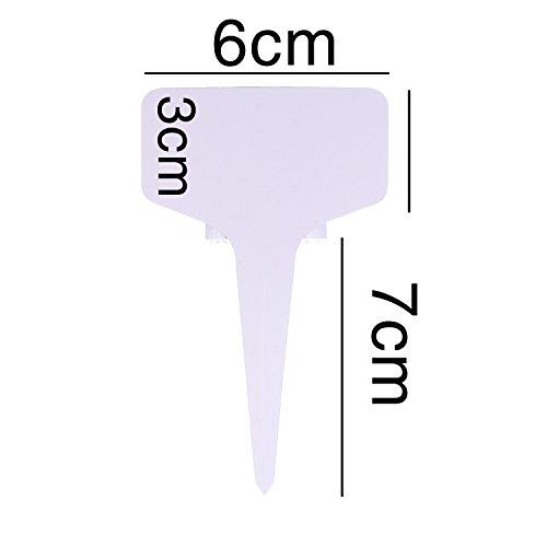 155 x 155 mm quadrate UmWelt/® Buste per lettere senza finestra con lembo umido 75 Umschl/äge sabbia