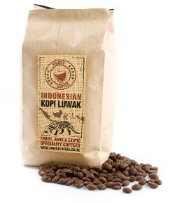 Indonesian Kopi Luwak 100% Certified Coffee 50 gm Whole Beans from FinestCoffee